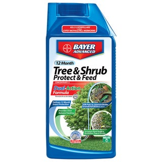 Bayer Advanced 12 Month Tree and Shrub Protect and Feed Concentrate, 32-Ounce