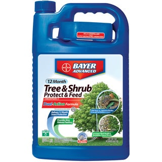 Bayer Advanced 12 Month Tree and Shrub Protect and Feed Concentrate, 1-Gallon
