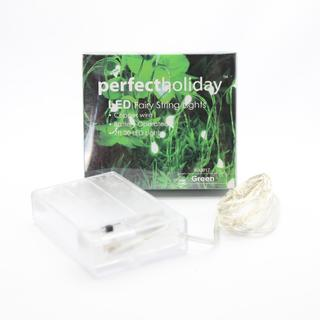 20 LED Copper String Light - Green