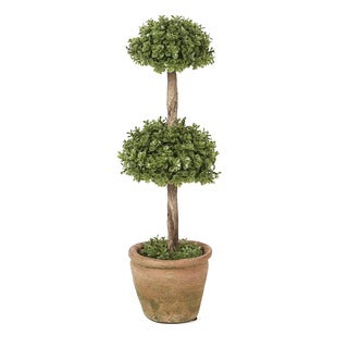 Winsome House Orchid 13-inch Double Treetop Topiary