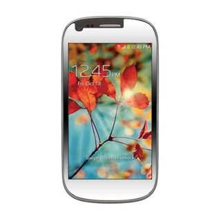 Insten Clear Screen Protector For Samsung Galaxy Light SGH-T399