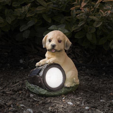 Yard Décor, Solar Outdoor LED Light and Battery Operated Statue for Garden by Pure Garden  Dog Statue