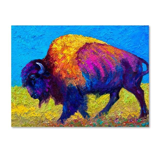 Marion Rose 'Prairie Dusk' Canvas Art