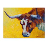 Marion Rose 'Longhorn Cow Study' Canvas Art