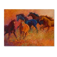 Marion Rose 'Free Range Horses' Canvas Art