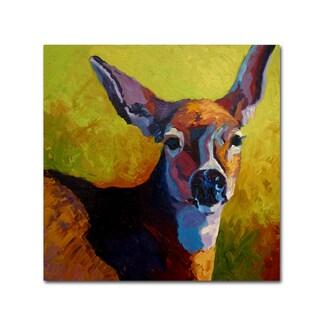 Marion Rose 'Doe Look' Canvas Art
