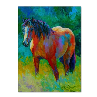 Marion Rose 'Buckskin II' Canvas Art