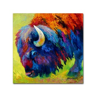 Marion Rose 'Bison Portrait II' Canvas Art