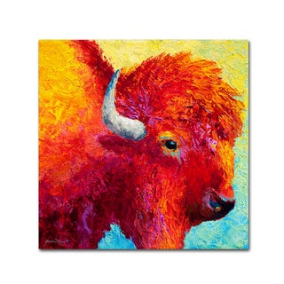 Marion Rose 'Bison Head IV' Canvas Art