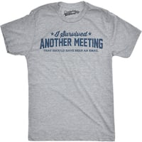 Mens Survived Another Meeting That Could Have Been an Email T shirt (Grey)