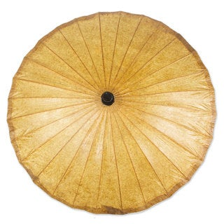 Paper Parasol, 'Saddle Brown' (Thailand)