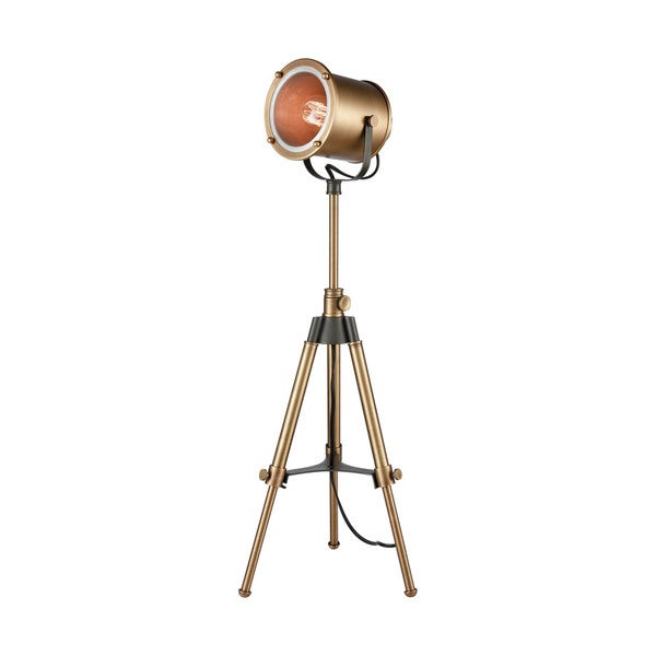 Dimond Lighting Ethan Aged Brass Metal Tripod Lamp