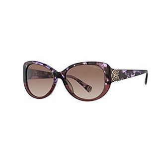 True Religion Sionan Black Fade Sunglasses