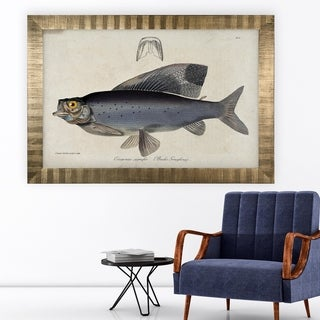 Vintage Fish Study I -Antique Gold Frame