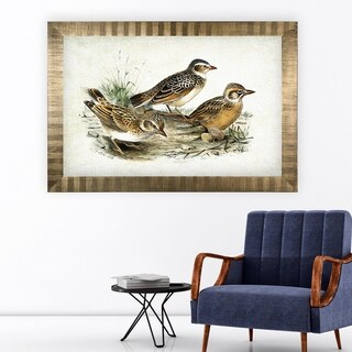 Aviary Sketch XIII -Antique Gold Frame