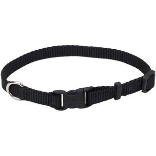 "Adjustable Nylon 3/8"" Dog Collar W/Tuff Buckle, Neck Size 8""-12"""