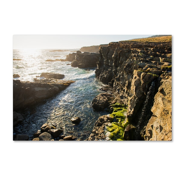 Lance Kuehne 'Wild Sonoma Coast' Canvas Art