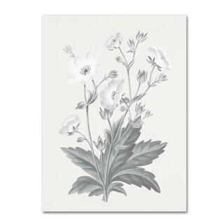 Wild Apple Portfolio 'Neutral Botanical VI' Canvas Art