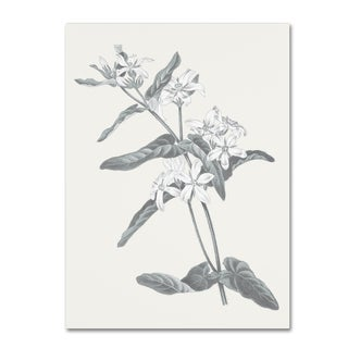 Wild Apple Portfolio 'Neutral Botanical IV' Canvas Art