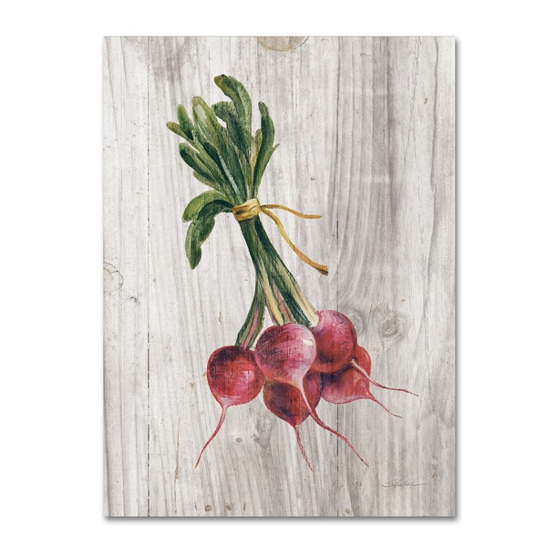 Silvia Vassileva 'Market Vegetables III' Canvas Art
