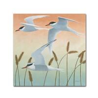 Kathrine Lovell 'Free as a Bird II v2' Canvas Art