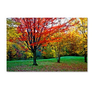 The Lieberman Collection 'Trees' Canvas Art