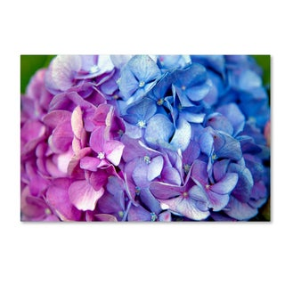 The Lieberman Collection 'Blue flower 2' Canvas Art