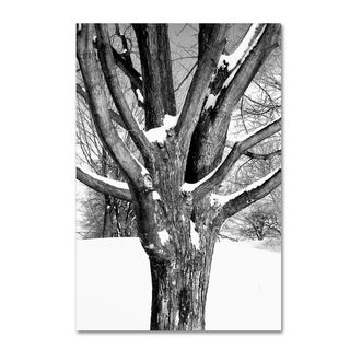 The Lieberman Collection 'Tree' Canvas Art