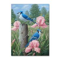 Robert Wavra 'Blue Jays' Canvas Art