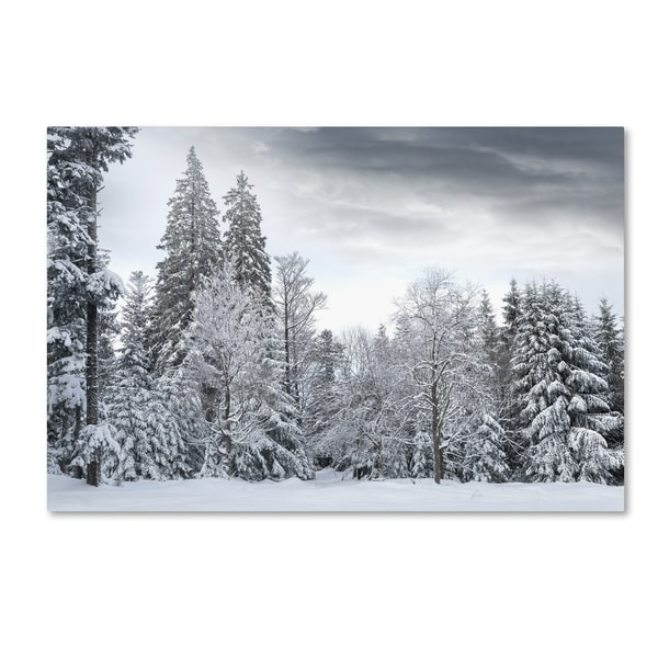 Philippe Sainte-Laudy 'We Only Have Forever' Canvas Art