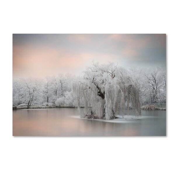 Philippe Sainte-Laudy 'Pure White' Canvas Art