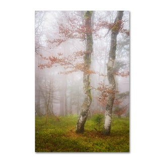 Philippe Sainte-Laudy 'Mysterious Forest' Canvas Art