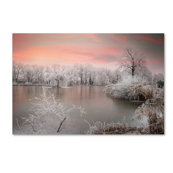 Philippe Sainte-Laudy 'Innocence' Canvas Art
