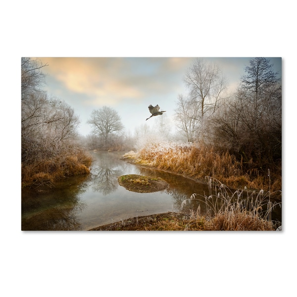 Philippe Sainte-Laudy 'Dear World,' Canvas Art