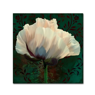 Tina Lavoie 'Poppy In Verdigris And Rust II' Canvas Art