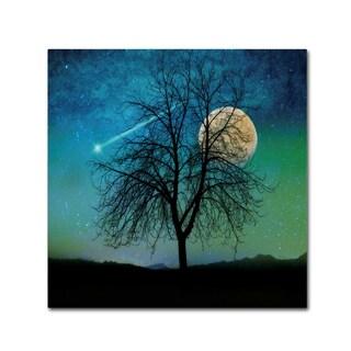 Tina Lavoie 'Opalescent Sky' Canvas Art