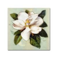 Tina Lavoie 'Nouveau Botanica' Canvas Art