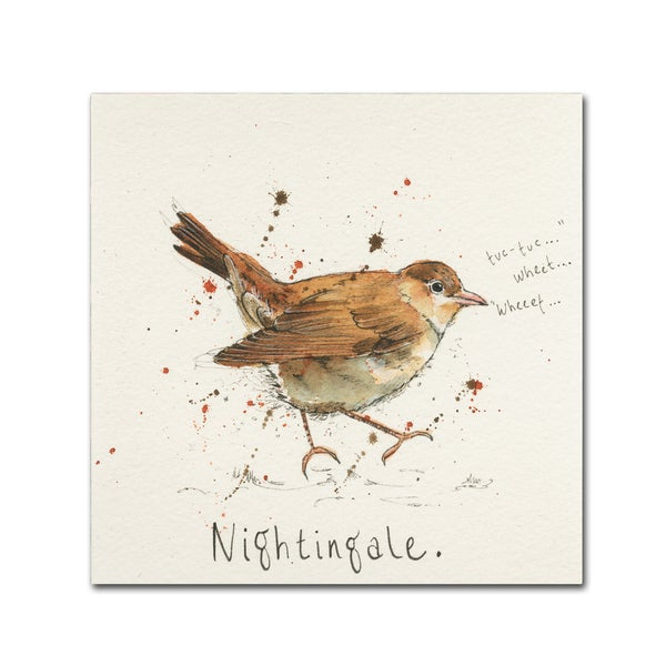Michelle Campbell 'Nightingale' Canvas Art