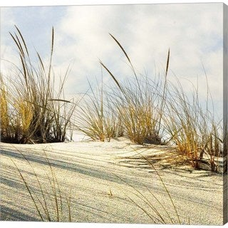 Harold Silverman 'Grassy Dune' Canvas Art