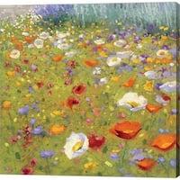 Shirley Novak 'Champ de Fleur II' Canvas Art