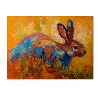 Marion Rose 'Rabbit II' Canvas Art