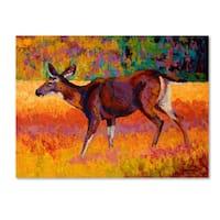 Marion Rose 'Doe I' Canvas Art