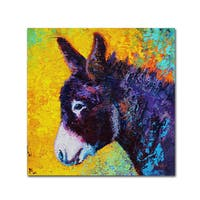Marion Rose 'Donkey Sparky' Canvas Art
