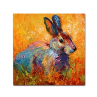 Marion Rose 'Bunny IV' Canvas Art