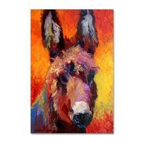 Marion Rose 'Donkey Portrait II' Canvas Art