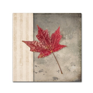 LightBoxJournal 'Lodge Leaf 1' Canvas Art