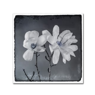 LightBoxJournal 'Blue Magnolia 3' Canvas Art