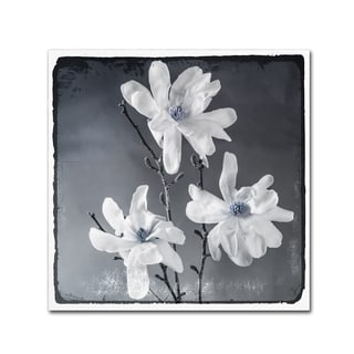 LightBoxJournal 'Blue Magnolia 2' Canvas Art