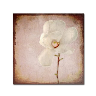 LightBoxJournal 'Paper Magnolia' Canvas Art