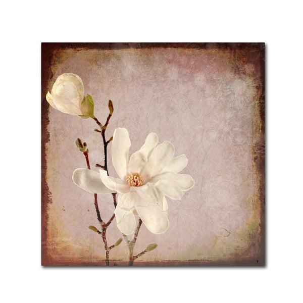 LightBoxJournal 'Paper Magnolia Duo' Canvas Art